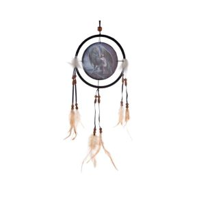 Lisa Parker Protector of Magic Dream Catcher - 16cm