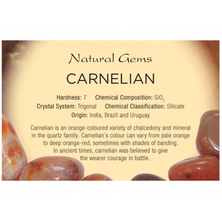 Natural Gems - Carnelian Educational Info Cards  - Pack of 50