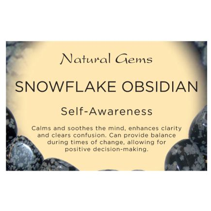 Natural Gems - Snowflake Obsidian Crystal Information Cards - Pack of 50
