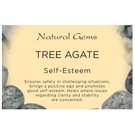 Natural Gems - Tree Agate Crystal Information Cards - Pack of 50