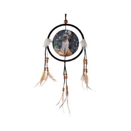 Hocus Pocus Cat Dreamcatcher - Lisa Parker Collection