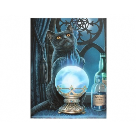 The Witches Apprentice Canvas