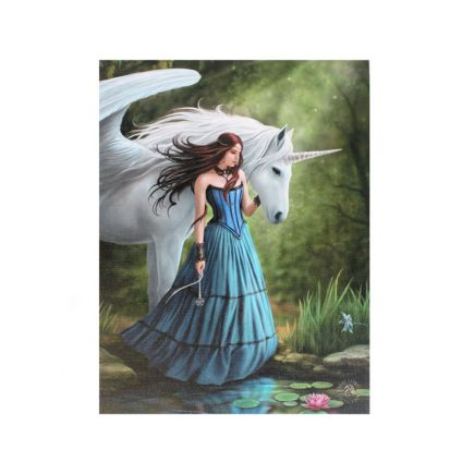 Enchanted Pool Anne Stokes Wall Plaque