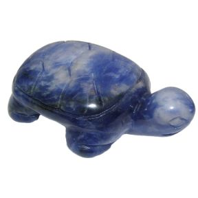 Sodalite Turtle Carving