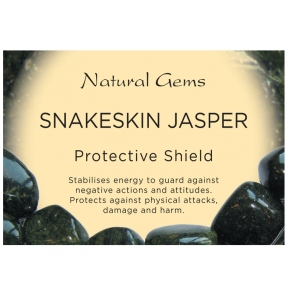 Natural Gems - Snakeskin Jasper Crystal Information Cards - Pack of 50