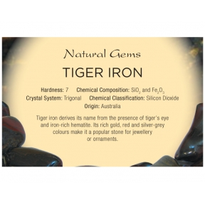 Natural Gems - Tiger Iron Educational Info Cards - Pack of 50