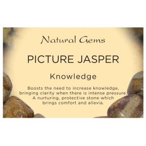 Natural Gems - Picture Jasper Crystal Information Cards - Pack of 50