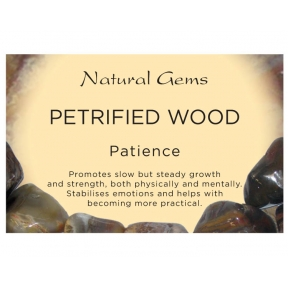Natural Gems - Petrified Wood Crystal Information Cards - Pack of 50