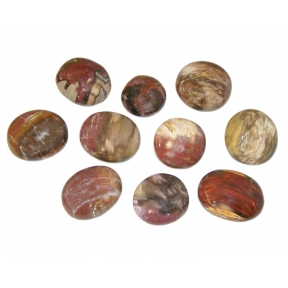 Petrified Wood Gallet