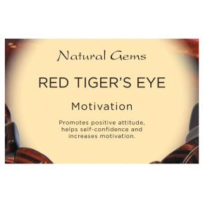 Natural Gems - Red Tigers Eye Crystal Information Cards - Pack of 50