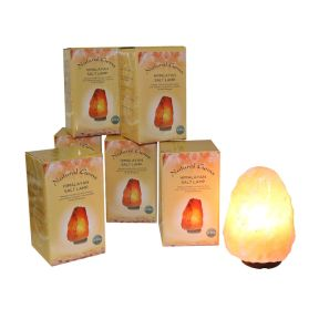 2-3kg Salt Lamps with gift box & Lead - 6 Pieces