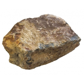 Stromatolite Rough