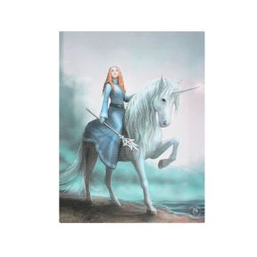 Anne Stokes Journey Starts Warrior Canvas Wall Plaque