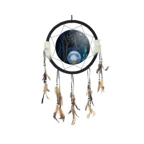 Lisa Parker The Witches Apprentice Dreamcatcher