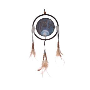 Witches Apprentice Dreamcatcher -  Lisa Parker Collection
