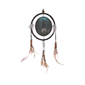 Rise Of the Witches Cat Dreamcatcher - Lisa Parker Collection