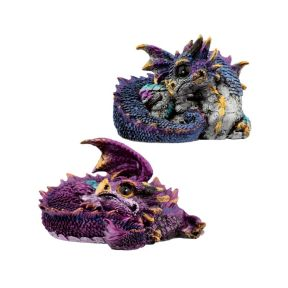 Curled Up Dragon - Pack of 4