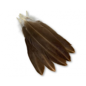 Imitation Native Eagle Feathers - Pack of 5