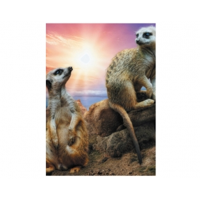 The Smiths' - Meerkats Greeting Cards - Pack of 5