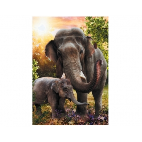 The Wilsons' - Elephant Greeting Cards - Pack of 5