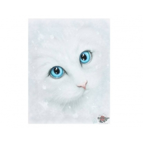 Winter Cat Canvas Linda Jones