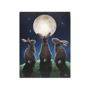 Moon Shadows Wall Plaque