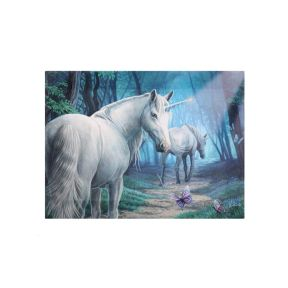 Anne Stokes Small  Journey Home Canvas