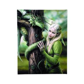Kindred Spirits Wall Plaque - Anne Stokes