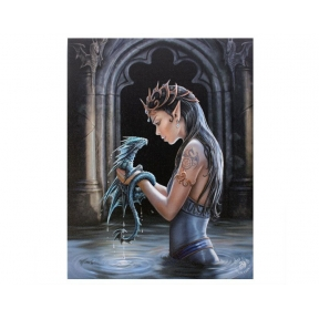 Water Dragon Wall Plaque - Anne Stokes