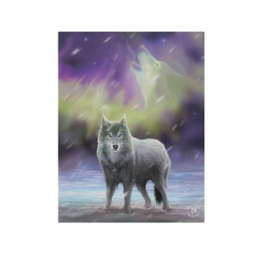 Anne Stokes Aurora Wall Plaque