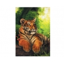 Toby Tiger Greeting Cards - Pack of 5