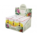 Goloka Blend Essential Oil Citrus Fresh - Pack of 12